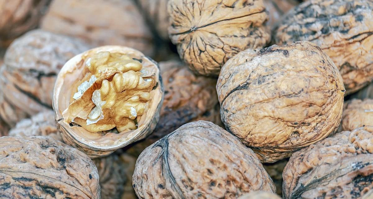 Właściwości odżywcze i prozdrowotne orzechów włoskich